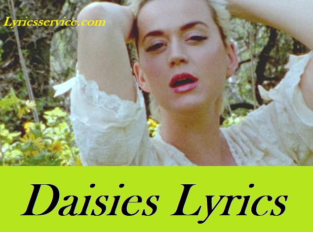 Daisies Lyrics